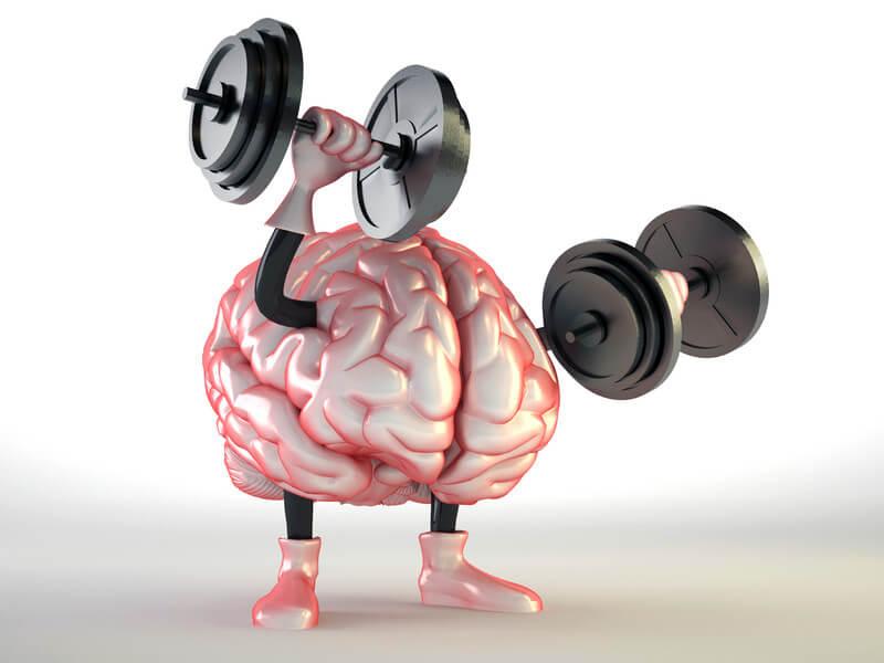 brain canstock